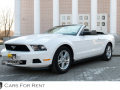 Ford Mustang -  - Спорт-купе/кабриолеты - Санкт-Петербург - CarsForRent