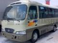 Аренда Hyundai County Москва (Elit Transfer)